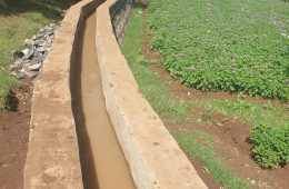 Rehabilitations of damaged irrigation and water supply projects
